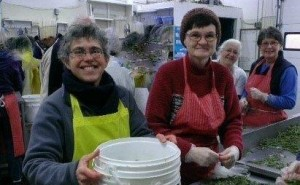 Volunteers at Gleaners